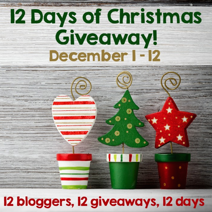 twelve days of christmas modern giveaways